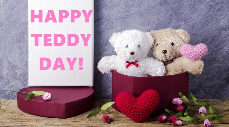 Teddy Day HD Pics