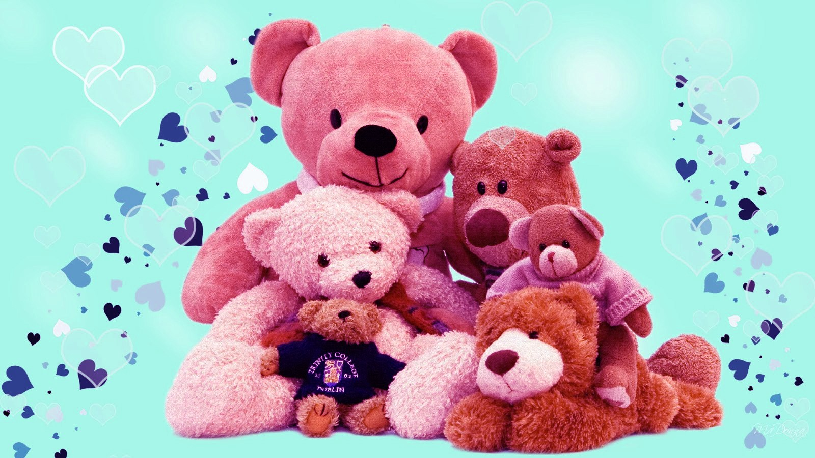 Teddy Day HD Pictures
