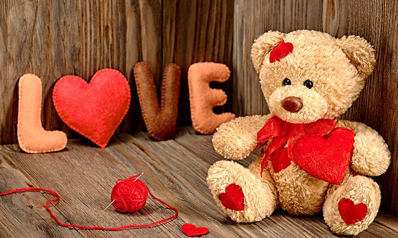 Teddy Day Wallpaper